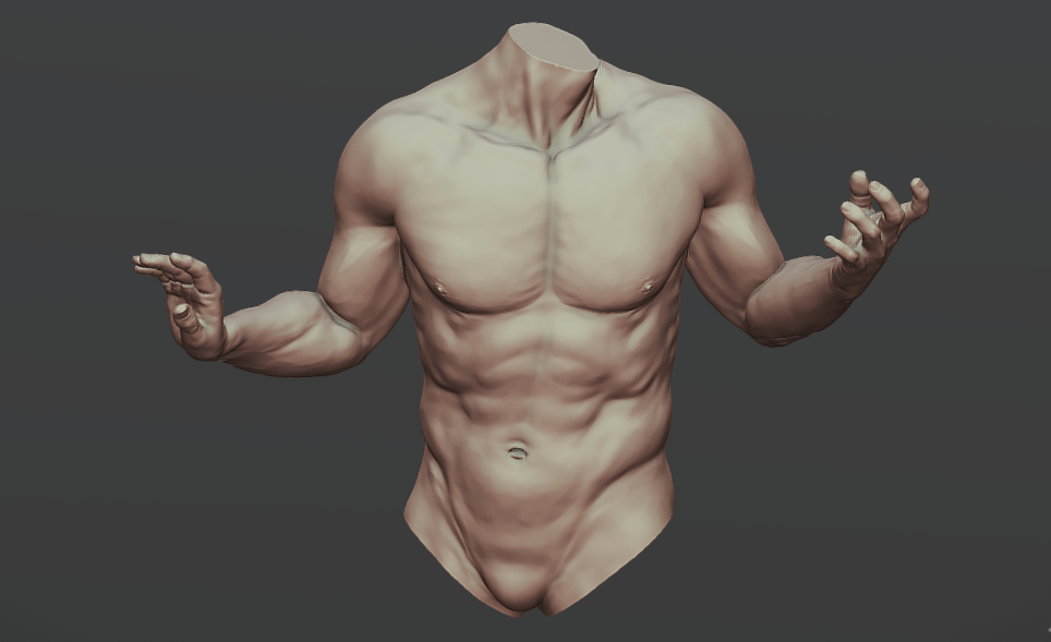 Torso With Arms 1